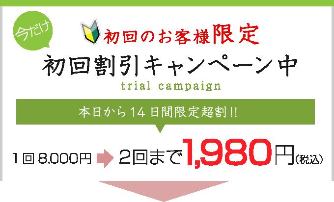 初回のお客様限定 お試しキャンペーン中 通常2回16,000円が2回で2,980円