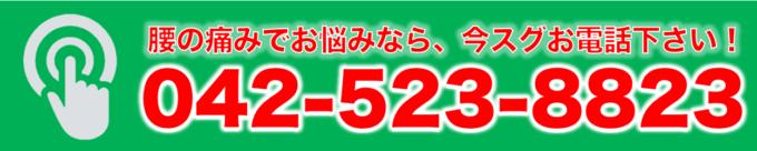 0425238823